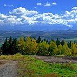 【北海道】旭川の就実の丘と美瑛の赤羽の丘を堪能!