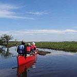 釧路湿原のおすすめカヌー&ウォーキング「釧路マーシュ&リバー」