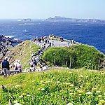 花の浮島、礼文島を安く効率よくまわる方法
