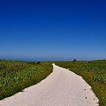 【北海道】宗谷丘陵の白い道を歩こう!