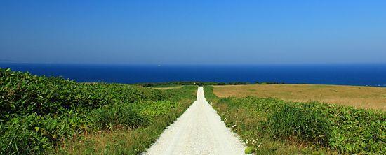 宗谷丘陵 白い道